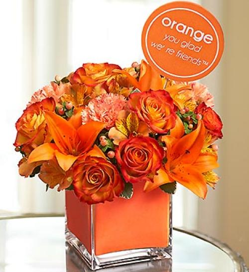 Orange You Glad We\'re Friends